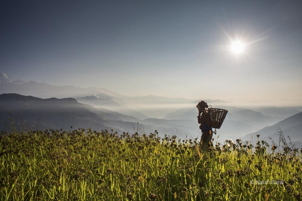 Woman Farmer, Gaunshahar, Lamjung